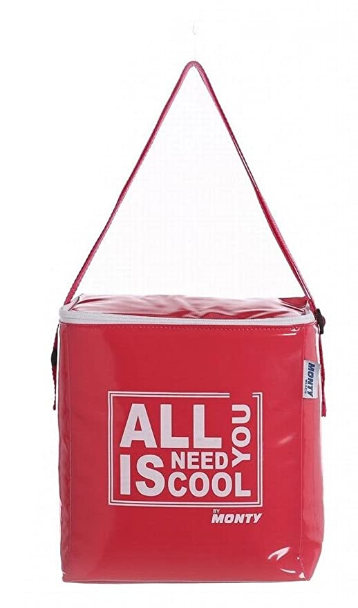 Juinsa Nevera All You Need is Cool de PVC Roja 22 x 14 x 25 cm ...