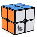 Toys : D-FantiX Cyclone Boys 2x2 Speed Cube Stickerless Solid Color Puzzle Toy (Feizhi Version)