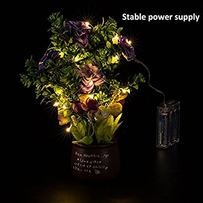 Addlon LED Starry String Lights??flexible Copper wire with blossom decorative 9ft??40leds with AA Battery Powered for Outdoor and Indoor Environments,wedding,christmas Party