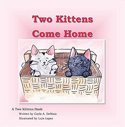 Two Kittens Come Home