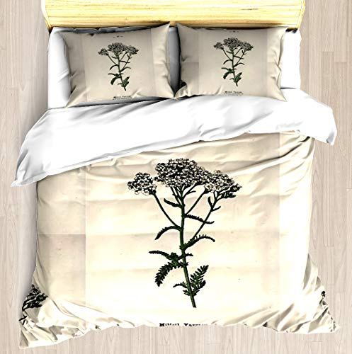 Wayside and woodland blossoms a pocket guide to British wild flowers for the country rambler by Edward Step 1895 036 Milfoil Yarrow Duvet Cover Set Soft Comforter Cover Blanket Cover Queen / Full Size -