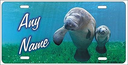 Manatee Sea Turtles Auto License Plate Personalize
