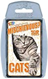 TOP Trumps - MICHIEVOUS Cats! Perfect Indoors, Travelling, Camping Holidays