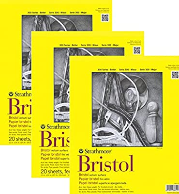 Strathmore 300- Bristol Board - 3 pack Bundle - Vellum Paper Pad - 9 x 12 - 20 Sheets Each Pad