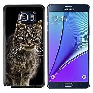 YiPhone /// Prima de resorte delgada de la cubierta del caso de Shell Armor - Gato noruego del bosque de Maine Coon de pelo largo - Samsung Galaxy Note 5 5th N9200