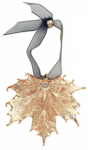 Sugar Maple Leaf - Curious Designs Leaf Ornament - Sugar Maple Leaves, Real Leaf