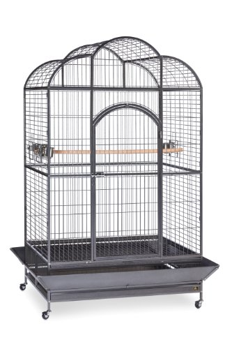 Top 10 Best Macaw Cages