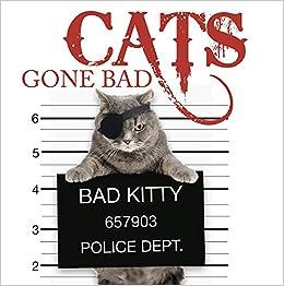 Cats Gone Bad Amber Books 9781782743200 Amazon Com Books