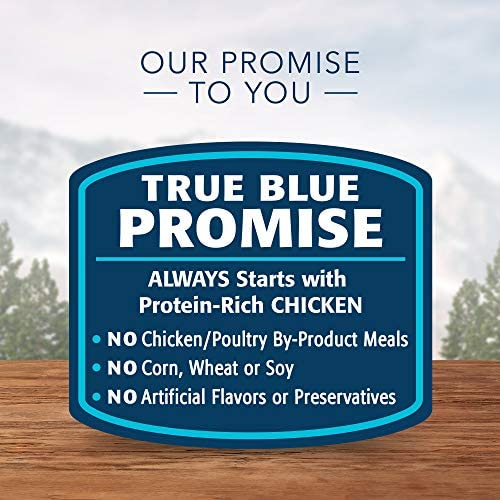 Blue Buffalo Wilderness Wild Delights High Protein Grain Free, Natural Adult Meaty Morsels Wet Cat Food 6
