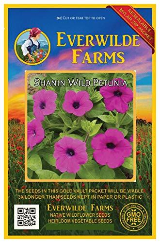 (Everwilde Farms - 2000 Shanin Wild Petunia Wildflower Seeds - Gold Vault Jumbo Seed Packet)