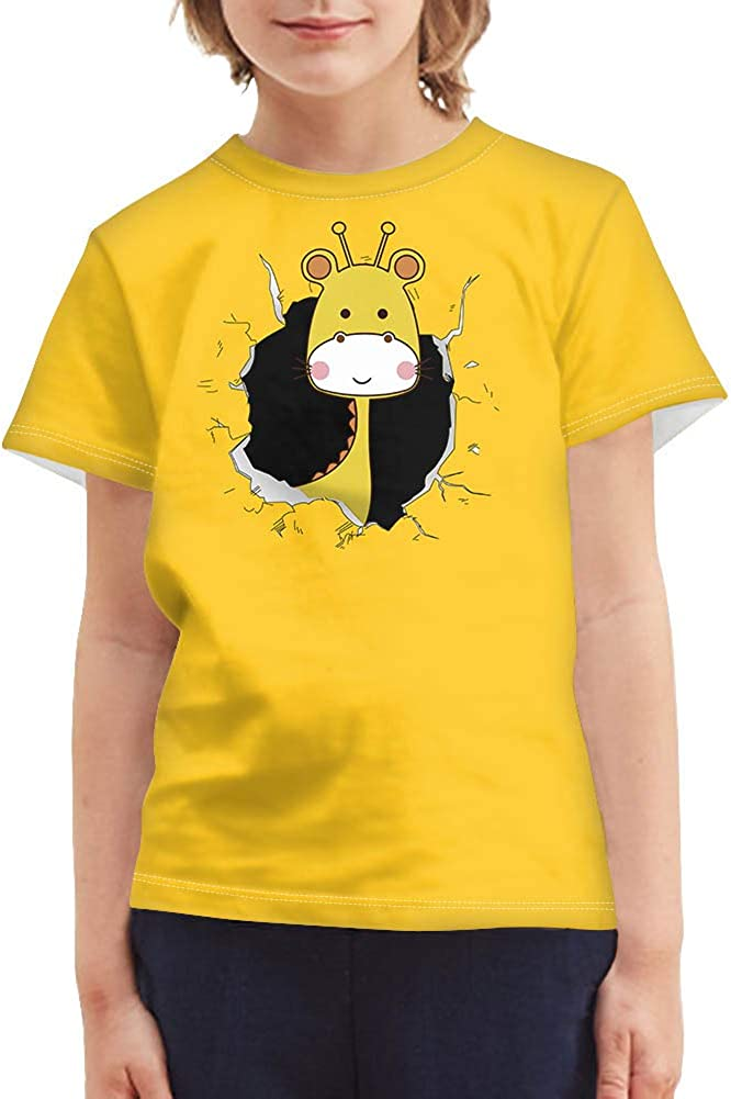 Salabomia Boys Tshirts Fashion Chromatic Shirts with 3D Graphic Pattern