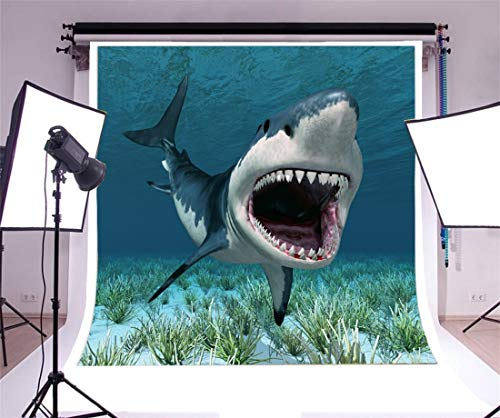 Buy swim photo backdrop