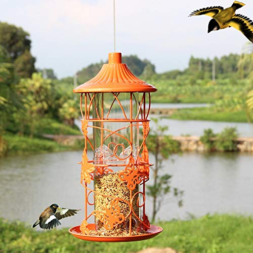 Bird Feeding - European Style Wild Bird Feeder Outdoor Feeders Food Container - Kaytee Finch Audubon 20lb Shelled Sunflower Waste Feeders Blocks Nyjer Peanuts Bulk Doves Suet Audobon Wild Cher