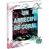 Un arrecife de coral/ A Coral Reef