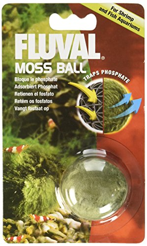 Hagen Betta Plant (Fluval Moss Ball)