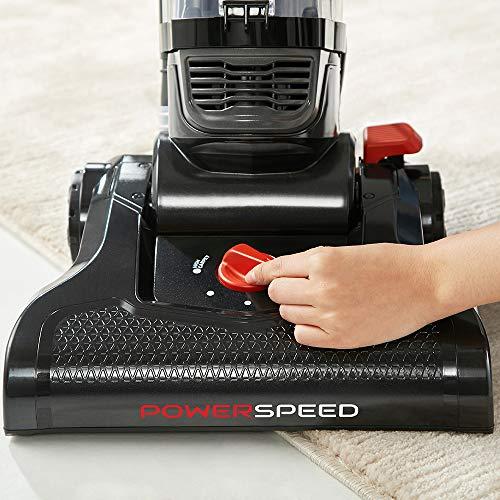 Buy pet hair eraser vacuum