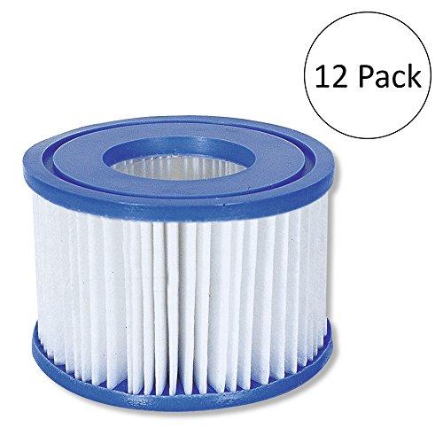(Bestway Coleman SaluSpa Filter Type VI Replacement Cartridge (12 Pack))