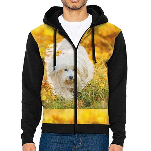 CXHKJ Fall Maltese Dog Men's Contrast Raglan Zipper Hooded Sweatshirts Pocket Black