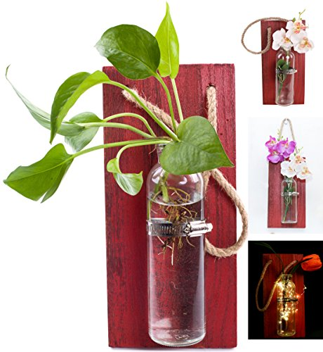Rustic Home Décor Wall Art Decoration Solid Wooden Board wall vases for Flowers Planters Hydroponic Plants Hanging Glassware - Home Garden Living Room Decor (no flower)(Red) from Eanjia