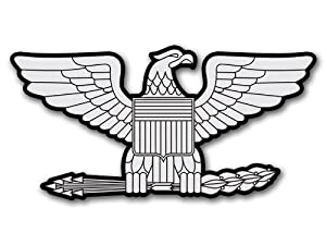 Amazon.com: RANK Colonel EAGLE Shaped Sticker (silver ...