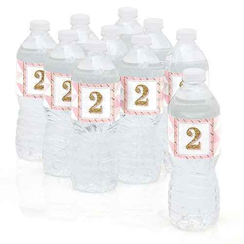 Two Much Fun - Girl - 2nd Birthday Party Water Bottle Sticker Labels - Set of 10