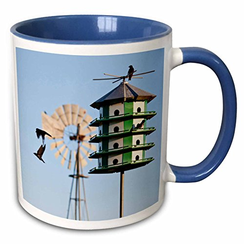 (3dRose Danita Delimont - Larry Ditto - Birds - Purple Martin, Progne subis, at nest box near windmill, Texas, USA - 15oz Two-Tone Blue Mug (mug_191303_11))