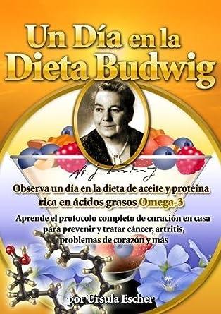 Un DiÃ'Âa en la Dieta Budwig - Aprende el protocolo completo ...