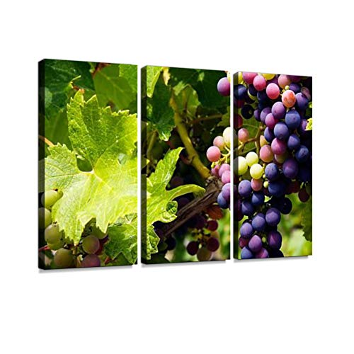 7houarts Vine Canvas Wall Artwork Poster Modern Home Wall Unique Pattern Wall Decoration Stretched and Framed - 3 Piece