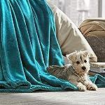 Bare-Home-Microplush-Velvet-Fleece-Blanket-FullQueen-Ultra-Soft-Luxurious-Fuzzy-Fleece-Fur-Cozy-Lightweight-Easy-Care-All-Season-Premium-Bed-Blanket-FullQueen-Emerald