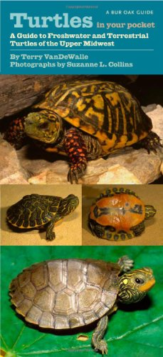 Turtles in Your Pocket: A Guide to Freshwater and Terrestrial Turtles of the Upper Midwest (Bur Oak ()