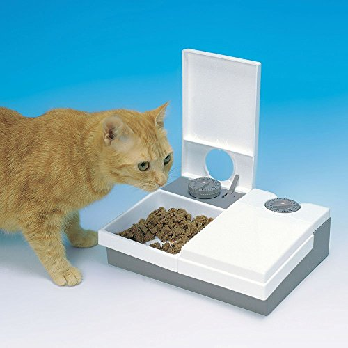 Cat Mate C  Bowl Pet Feeder With Ice Pack
