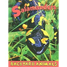 Salamanders (Backyard Animals)
