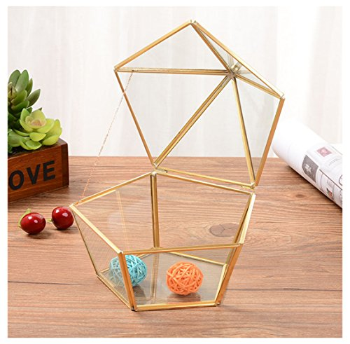 Alrsodl Exquisite Mini Faceted Pentagon Gilt Metal Geometric Shape Clear Glass Hinged Top Lid Flower Room Plant Terrarium Box Jewelry Box Handicraft For Tabletop Home Decoration ()