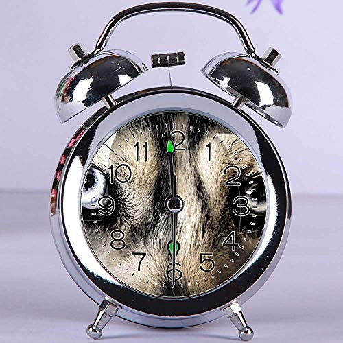 GIRLSIGHT Cute Color Alarm Clock, Round Metal Desk Clock with Night Light Bedroom Decorations 157.Close Up Photo of White and Black Short-furred Animal(Silver)