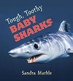Tough, Toothy Baby Sharks, Sandra Markle, 0802795943