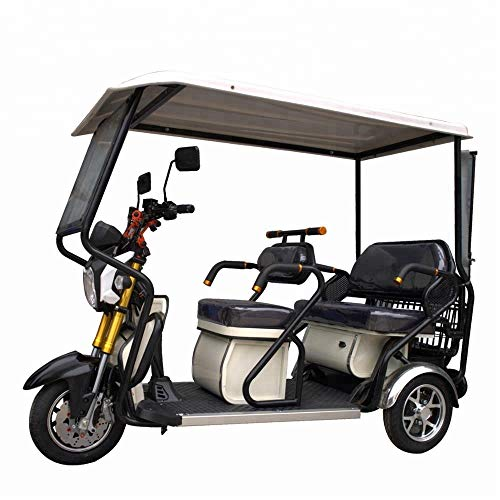 SEADOSHOPPING Superior Electric 3 Wheeler Mini Bus Sightseeing Cart,Golf Carts (Best Electric Golf Cart For Hunting)
