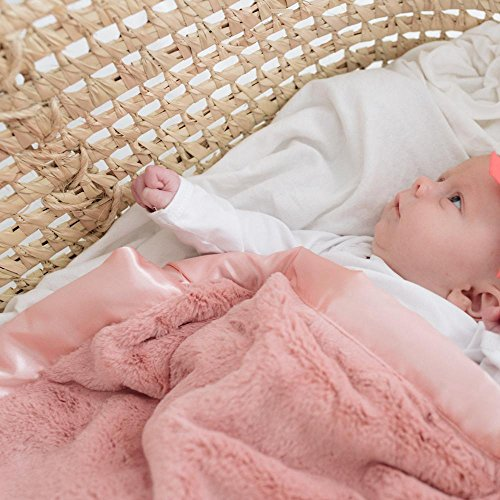 Super Soft Plush Satin Border Baby Mini Security Blankets, (Satin Mini Blanket)