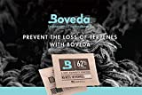 Cannabis Herb Preserve Kit, Boveda 62% RH 8 Gram