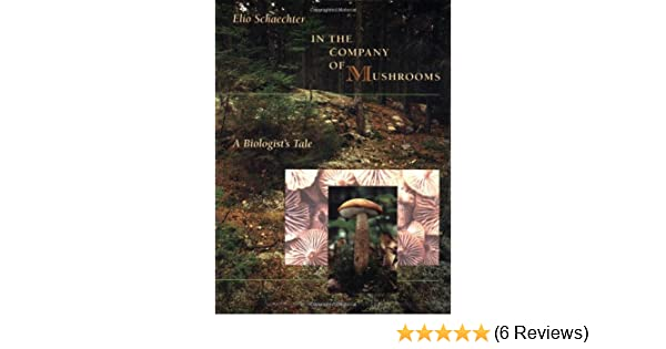 Amazon in the company of mushrooms a biologists tale amazon in the company of mushrooms a biologists tale 9780674445550 elio schaechter books fandeluxe Image collections