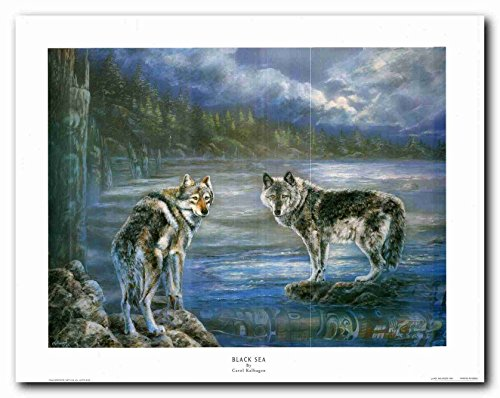 Snow Grey Wolf Native American Black Sea Wall Decor Art Print Poster (22x28) (22 Wolf Sea)