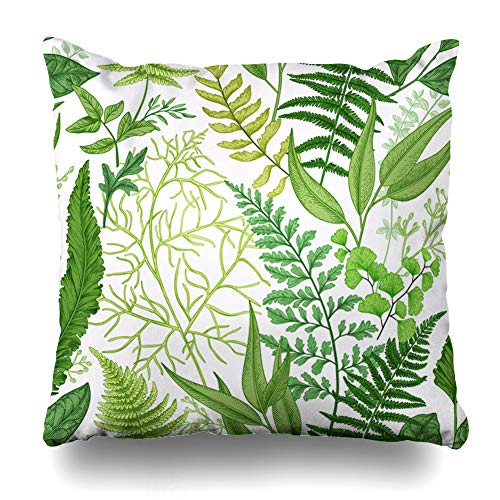 Ahawoso Throw Pillow Cover Pattern Spring Leafy Green Vintage Floral Different Herb Ferns Botanical Leaf Foliage Herbal Decor Zippered Cushion Case 18