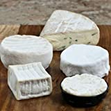 Gooey Cheese Sampler - Assortment of 5 Cheeses