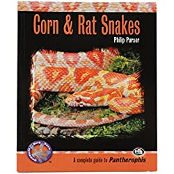 Tfh Nylabone STFCH800 Herp Care Corn and Rat Snakes