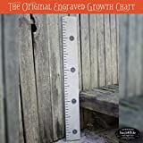 Back40Life 48'' Premium Engraved Wooden Growth Height Chart Ruler - The Typewriter (Classic Gray + Black)