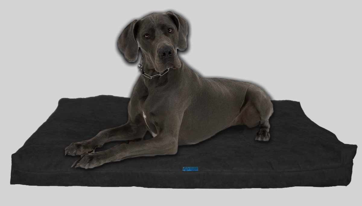 Five Diamond Collection Shredded Memory Foam Orthopedic Bed with Removable Washable Cover and Water Proof Inner Fabric, Extra Large (55-Inch-by-37-Inch), Charcoal Microfiber, for Dogs