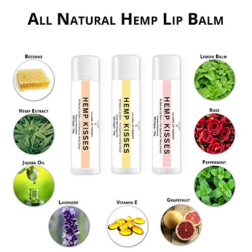 Organic Hemp Lip Balm | Natural Beeswax Lip Balm Set | All Natural Lip Balm w/Jojoba Oil, Coconut Oil & Essential Oils | Best Hemp Chapstick for Dry, Chapped & Cracked Lips | Lip Repair | 3 Pack