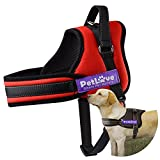 Pet Love Dog Harness, Soft Leash Padded No Pull Dog Harness with All Kinds of Size (Small, Red)