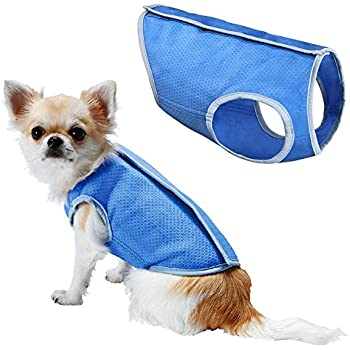 LotFancy Dog Cooling Vest Jacket Coats Swamp Cooler for Puppies Cats Kittens Pets (Blue, Small 7.8