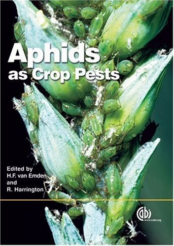 aphids-as-crop-pests