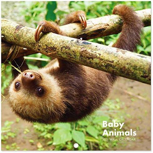Baby Animals 2021 Cute Calendar 15/% OFF MULTI ORDERS!